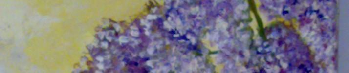 cropped-movil-c7-020.jpg